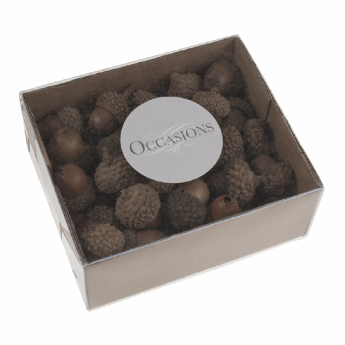 Acorns 50 Pieces